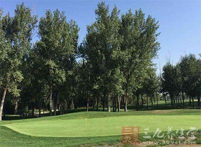 高尔夫球杆分类 三种不同的球杆任你选择