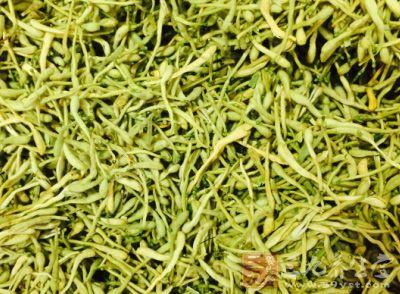 金银花的功效与作用 金银花的常用药方