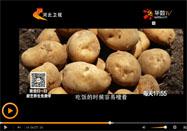 20160417家政女皇视频:夏天讲焖土豆的做法