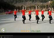 广场舞又见山里红 经典舞蹈教学视频