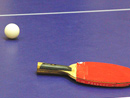 乒乓球拍的规则