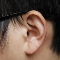 耳鸣中药方剂
