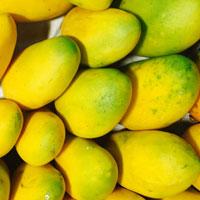 芒果的营养价值 吃芒果能抗菌消炎还能防癌