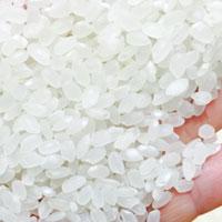 粳米和大米的区别 粳米和大米的营养价值