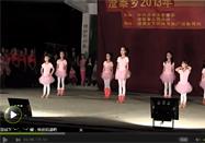 幼儿舞蹈最炫民族风动作教学视频