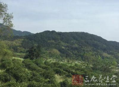 来到贵州,我们一定要去看一看梵净山