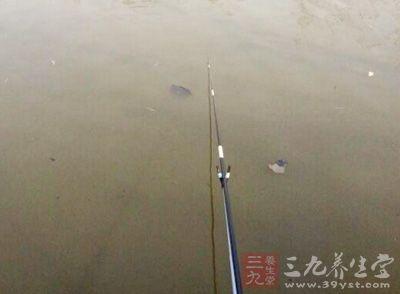 在大鱼的有力但缓慢的挣脱下,韧性好的鱼钩必然被拉直;
