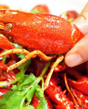 吃小龙虾头部会中毒吗