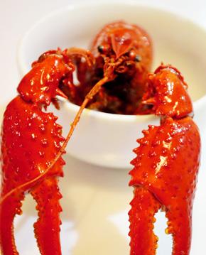 小龙虾有寄生虫吗
