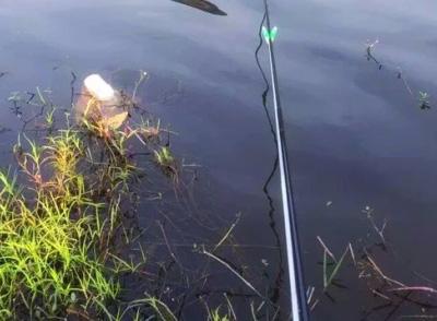 钓鲫鱼技巧 立体钓鲫鱼的主动以及被动钓法