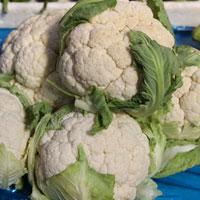 菜花的功效与作用 常常吃菜花能防癌抗癌