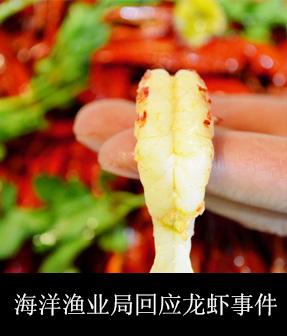 海洋渔业局回应龙虾事件