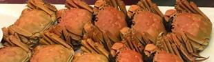 螃蟹的功效 吃螃蟹的好处多但是禁忌也不少