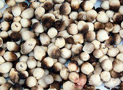草菇幼时黑色,后变成鼠灰色乃至白色
