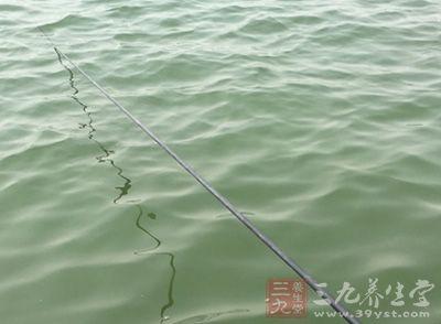 钓鲢鱼技巧 夏季如何使用手竿钓鲢鱼