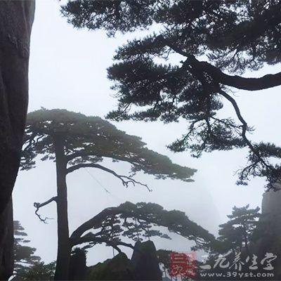 """黄山一九九零年被列入""""世界遗产(文化和自然)""""名录"""