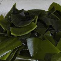 海带的功效 常吃海带能帮助我们降血脂