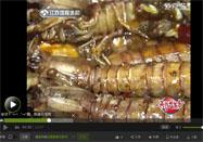 20160523健康好味道视频全集:皮皮虾的做法