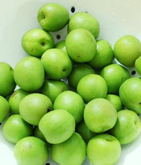 芒種吃這些應季食物更健康