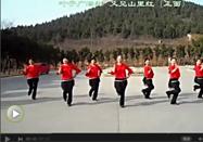 叶子广场舞又见山里红分解动作视频教学