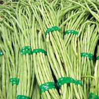 吃豇豆可降低结肠癌