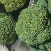西兰花中含有二硫酚硫酮
