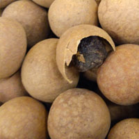 干桂圆的功效与作用 干桂圆还含有硫胺素