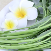 空心菜的营养价值 空心菜中含有的粗纤维素