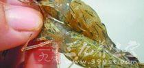 虾作为最普通的食物,可以说是老、孕、少皆宜的