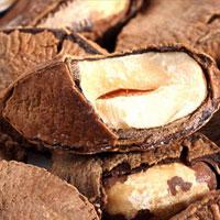 鲍鱼果的营养价值 鲍鱼果富含优质油脂