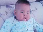 婴儿能吃西兰花吗