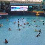 游泳池会传染妇科病
