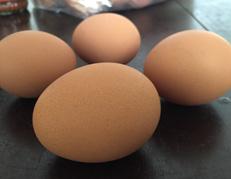 鸡蛋壳的清洁作用