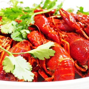 中国八大菜系的特点 吃货必备知识