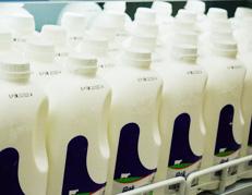 饮食忌讳 六类人不宜喝牛奶