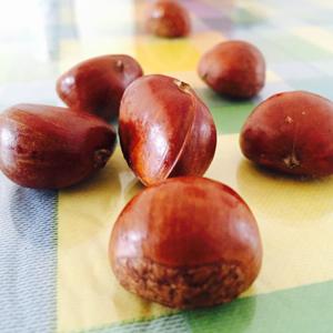 栗子的热量 如何健康食用栗子