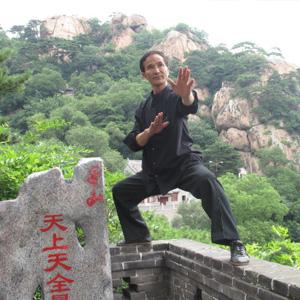太极拳视频 太极拳的练习技巧?#24515;?#20123;