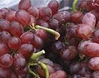 坐月子吃葡萄竟有这作用