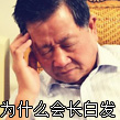 为什么会长白发