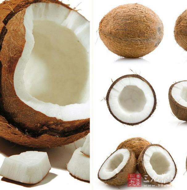 椰子的成长步骤图