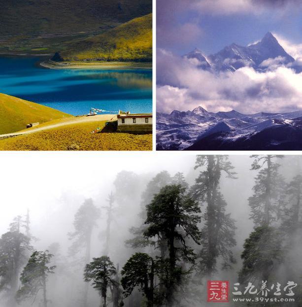 [转载]西藏旅游攻略 西藏旅游的景点及禁忌