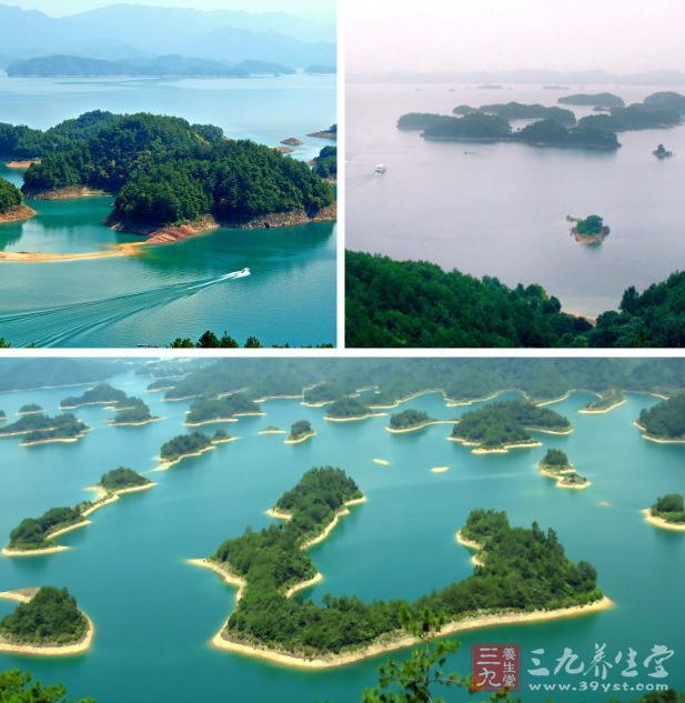 千岛湖风景区群山绵延,森林繁茂,绿视率   100% ,湖区573平方公里