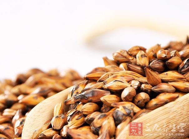 大麦茶含有人体所需的17种微量元素,19种以上氨基酸