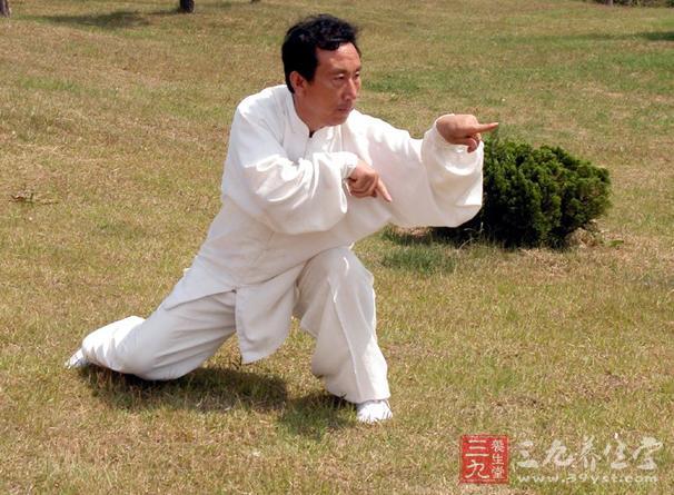 陈式太极拳83式太极拳视频教学唐宋元16家技法视频图片