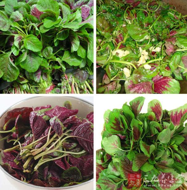 苋菜的营养价值   苋菜的叶子中含有大量的赖氨酸,赖氨酸能够用来