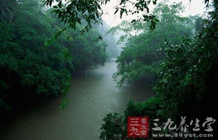 二十四节气之谷雨养生