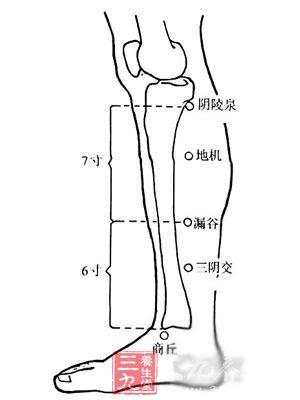 点压合谷穴:治晕厥 合谷穴治晕厥 合谷穴位于左右手背第一,二掌骨