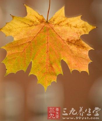 """秋季养生指南 如何赶走体内的""""秋老虎"""""""