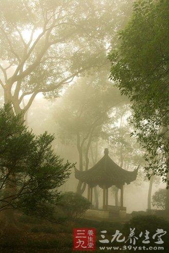 起雾时气压低 含氧量低图片