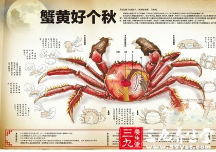 中秋佳节吃螃蟹 避开相克食物8要点